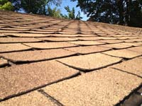 Great So How Do You Know When It Is Time To Replace Your Roof Shingles? Below Are  Some Tell Tale Signs That Your Roof Shingles Needs Replacing.